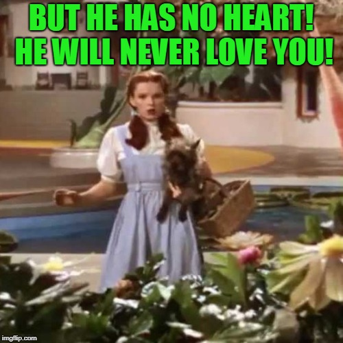 dorothy | BUT HE HAS NO HEART! HE WILL NEVER LOVE YOU! | image tagged in dorothy | made w/ Imgflip meme maker
