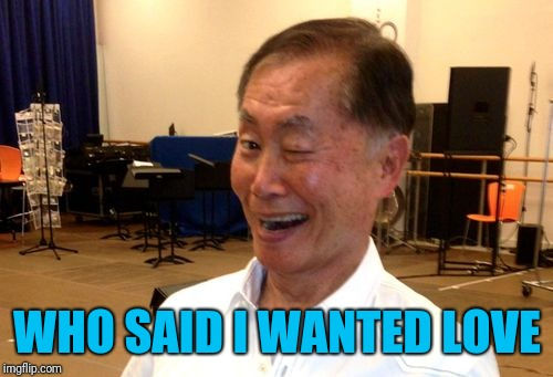 Winking George Takei | WHO SAID I WANTED LOVE | image tagged in winking george takei | made w/ Imgflip meme maker