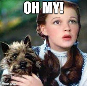 dorothy | OH MY! | image tagged in dorothy | made w/ Imgflip meme maker