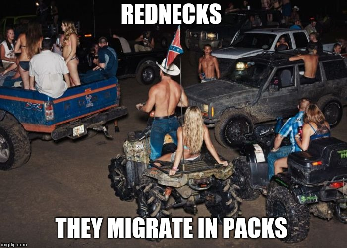 Redneck Migration | REDNECKS THEY MIGRATE IN PACKS | image tagged in redneck,deep south,america,murica,funny | made w/ Imgflip meme maker