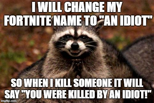 "Evil Plotting Raccoon | I WILL CHANGE MY FORTNITE NAME TO ""AN IDIOT"" SO WHEN I KILL SOMEONE IT WILL SAY ""YOU WERE KILLED BY AN IDIOT!"" 