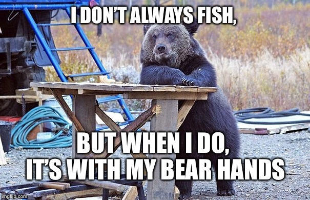 dos equis bear | I DON'T ALWAYS FISH, BUT WHEN I DO, IT'S WITH MY BEAR HANDS | image tagged in dos equis,bear memes,memes,bear puns | made w/ Imgflip meme maker