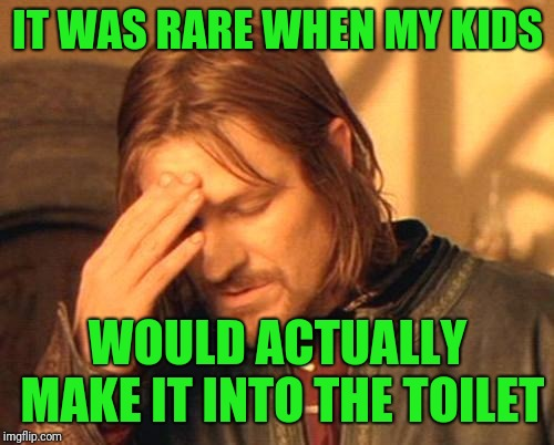 Frustrated Boromir | IT WAS RARE WHEN MY KIDS WOULD ACTUALLY MAKE IT INTO THE TOILET | image tagged in frustrated boromir | made w/ Imgflip meme maker