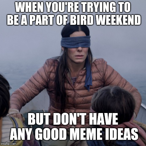 bird box | WHEN YOU'RE TRYING TO BE A PART OF BIRD WEEKEND BUT DON'T HAVE ANY GOOD MEME IDEAS | image tagged in bird box,birds,bird weekend | made w/ Imgflip meme maker