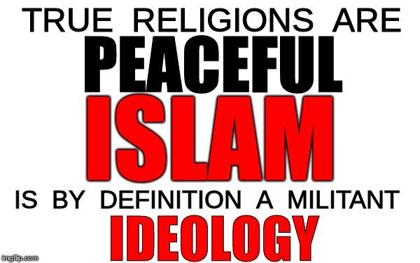 White Blank | TRUE  RELIGIONS  ARE IS  BY  DEFINITION  A  MILITANT PEACEFUL ISLAM IDEOLOGY | image tagged in religion,islam,ideology | made w/ Imgflip meme maker