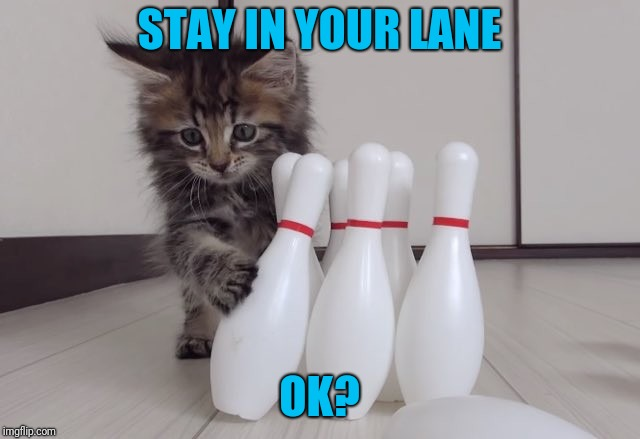 STAY IN YOUR LANE OK? | made w/ Imgflip meme maker