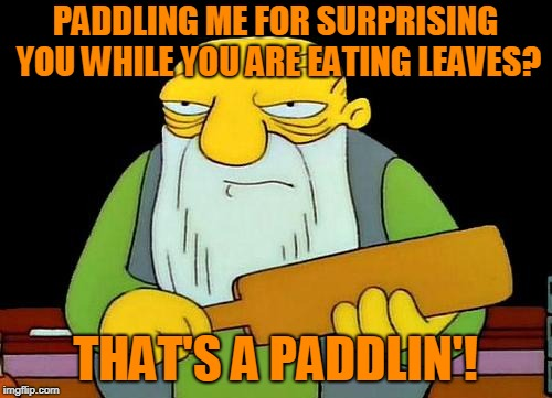 That's a paddlin' Meme | PADDLING ME FOR SURPRISING YOU WHILE YOU ARE EATING LEAVES? THAT'S A PADDLIN'! | image tagged in memes,that's a paddlin' | made w/ Imgflip meme maker