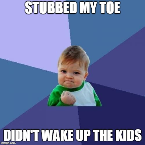 Success Kid Meme | STUBBED MY TOE DIDN'T WAKE UP THE KIDS | image tagged in memes,success kid | made w/ Imgflip meme maker