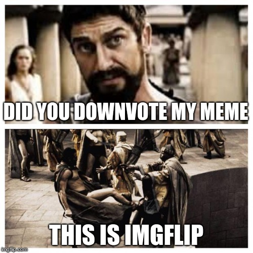 300 | DID YOU DOWNVOTE MY MEME THIS IS IMGFLIP | image tagged in 300 | made w/ Imgflip meme maker