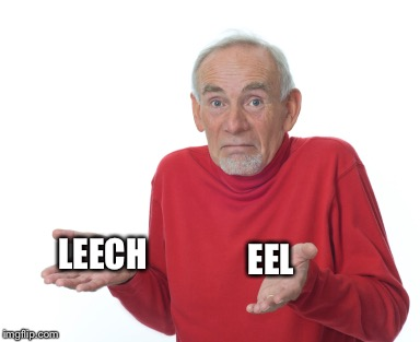 Old Man Shrugging | LEECH EEL | image tagged in old man shrugging | made w/ Imgflip meme maker