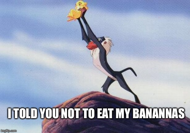 lion king | I TOLD YOU NOT TO EAT MY BANANNAS | image tagged in lion king,rafiki,kill the lion | made w/ Imgflip meme maker