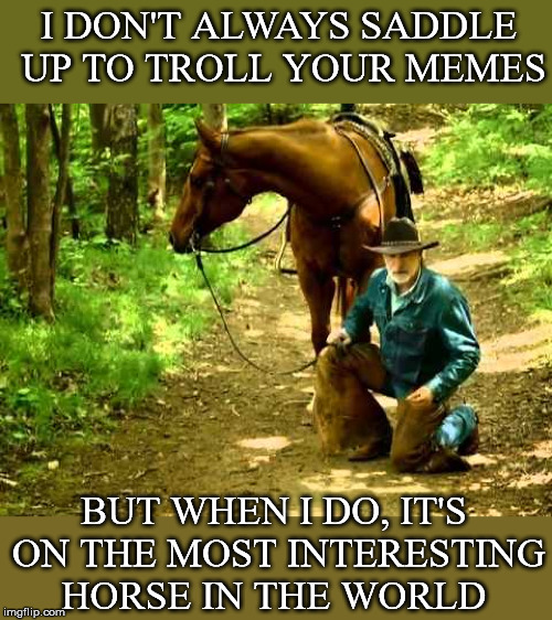 the most interesting horse in the world | I DON'T ALWAYS SADDLE UP TO TROLL YOUR MEMES BUT WHEN I DO, IT'S ON THE MOST INTERESTING HORSE IN THE WORLD | image tagged in the,most,interesting,memes,in the world | made w/ Imgflip meme maker