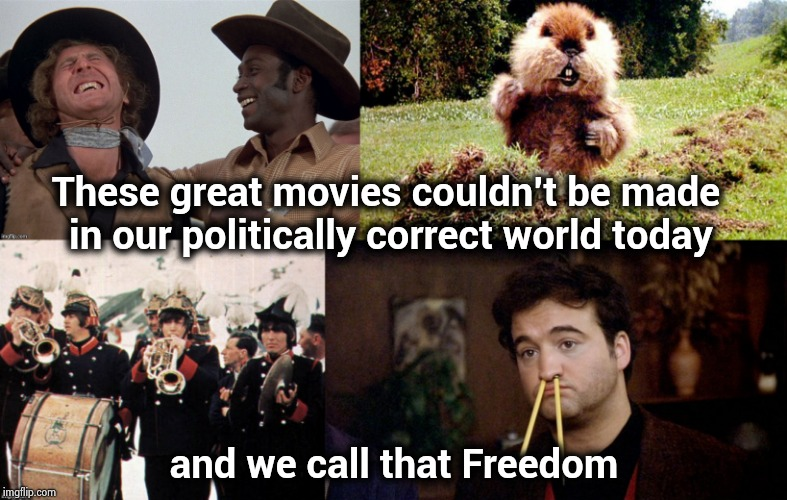 As comedy gets dumb and dumber | These great movies couldn't be made in our politically correct world today and we call that Freedom | image tagged in classic movies,just plain comedy,political correctness,censorship,offensive | made w/ Imgflip meme maker