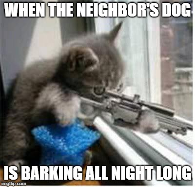 Need. Sleep. Badly. | WHEN THE NEIGHBOR'S DOG IS BARKING ALL NIGHT LONG | image tagged in cats with guns,dogs,guns,cats,barking,sleep | made w/ Imgflip meme maker