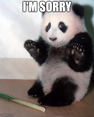Hands Up panda | I'M SORRY | image tagged in hands up panda | made w/ Imgflip meme maker