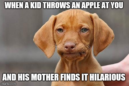 Dissapointed puppy | WHEN A KID THROWS AN APPLE AT YOU AND HIS MOTHER FINDS IT HILARIOUS | image tagged in dissapointed puppy | made w/ Imgflip meme maker