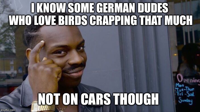 Roll Safe Think About It Meme | I KNOW SOME GERMAN DUDES WHO LOVE BIRDS CRAPPING THAT MUCH NOT ON CARS THOUGH | image tagged in memes,roll safe think about it | made w/ Imgflip meme maker