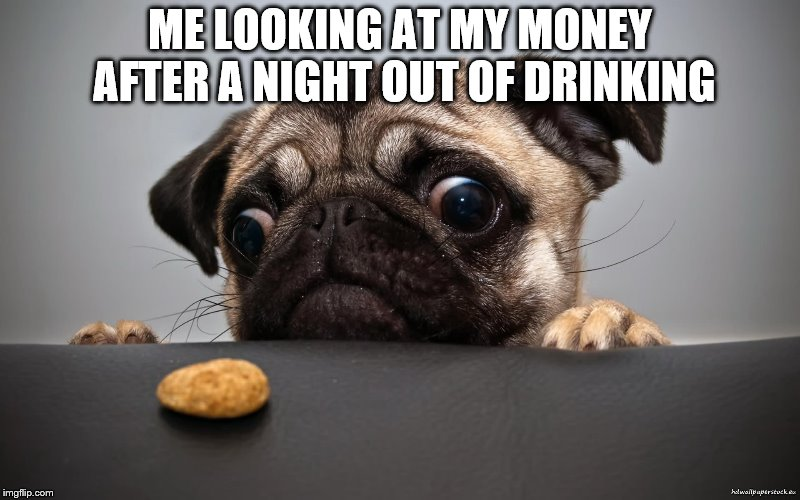 This letter serves to express my interest in the post that was advertised. I believe I am just the right person for the job as I | ME LOOKING AT MY MONEY AFTER A NIGHT OUT OF DRINKING | image tagged in funny,salary,panzozo | made w/ Imgflip meme maker