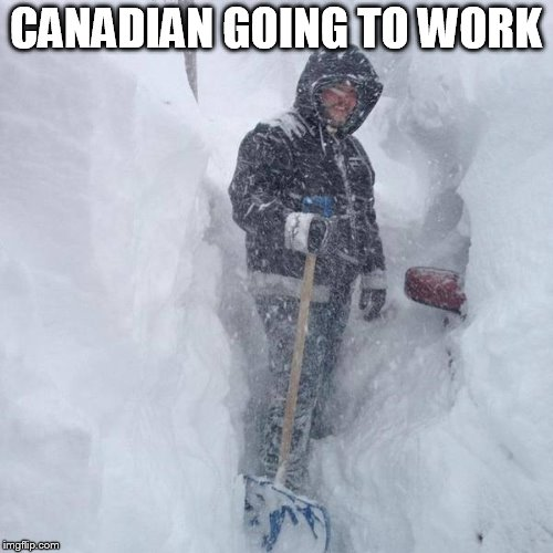 SNOW!!! | CANADIAN GOING TO WORK | image tagged in snow | made w/ Imgflip meme maker