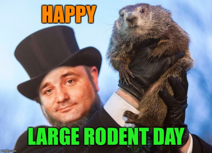How is this even a thing? | HAPPY LARGE RODENT DAY | image tagged in groundhog day,bill murray,punxsutawney phil,why | made w/ Imgflip meme maker