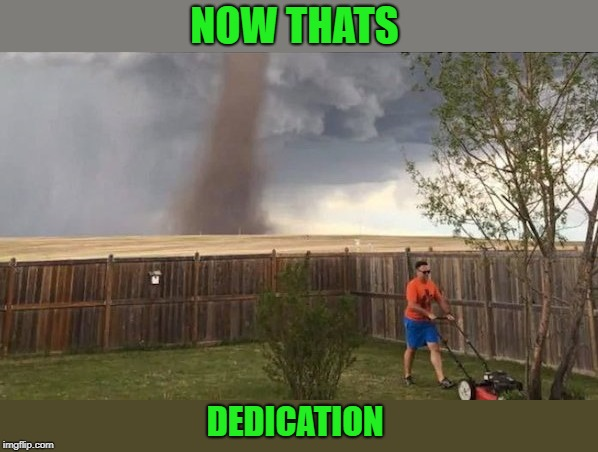 oh oh! | NOW THATS DEDICATION | image tagged in twister,mowing grass,pay attention | made w/ Imgflip meme maker