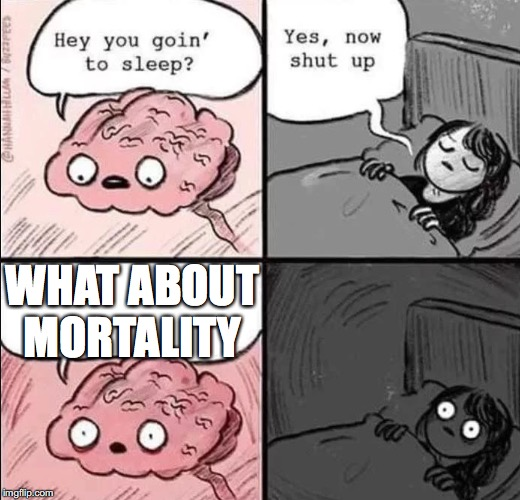 waking up brain | WHAT ABOUT MORTALITY | image tagged in waking up brain | made w/ Imgflip meme maker