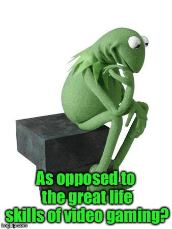 Philosophy Kermit | As opposed to the great life skills of video gaming? | image tagged in philosophy kermit | made w/ Imgflip meme maker