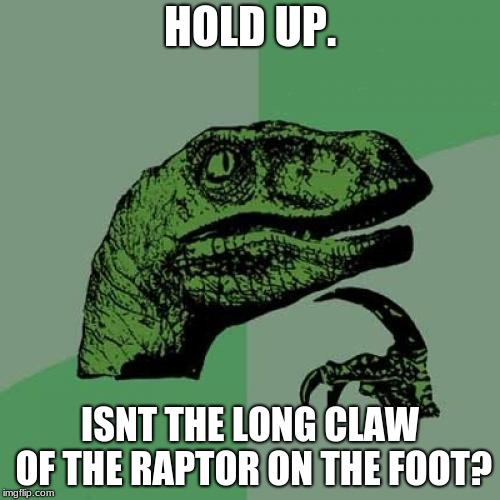 Philosoraptor Meme | HOLD UP. ISNT THE LONG CLAW OF THE RAPTOR ON THE FOOT? | image tagged in memes,philosoraptor | made w/ Imgflip meme maker