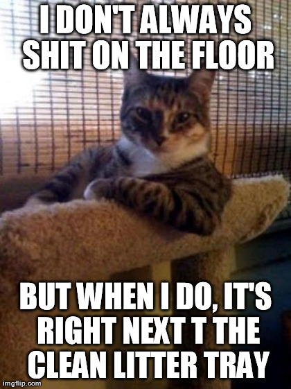 The Most Interesting Cat In The World Meme | I DON'T ALWAYS SHIT ON THE FLOOR BUT WHEN I DO, IT'S RIGHT NEXT T THE CLEAN LITTER TRAY | image tagged in memes,the most interesting cat in the world,AdviceAnimals | made w/ Imgflip meme maker