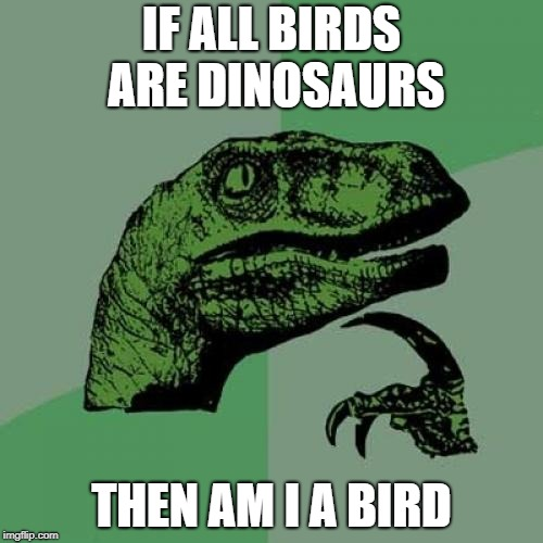 More bird jokes for y'all, happy bird weekend. | IF ALL BIRDS ARE DINOSAURS THEN AM I A BIRD | image tagged in memes,philosoraptor,bird weekend | made w/ Imgflip meme maker