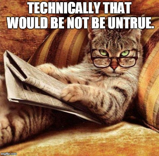 Smart Cat | TECHNICALLY THAT WOULD BE NOT BE UNTRUE. | image tagged in smart cat | made w/ Imgflip meme maker