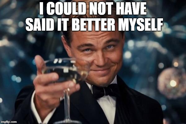 Leonardo Dicaprio Cheers Meme | I COULD NOT HAVE SAID IT BETTER MYSELF | image tagged in memes,leonardo dicaprio cheers | made w/ Imgflip meme maker