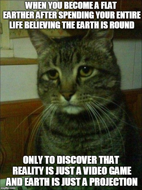 And you fall through it instead of off of it. |  WHEN YOU BECOME A FLAT EARTHER AFTER SPENDING YOUR ENTIRE LIFE BELIEVING THE EARTH IS ROUND; ONLY TO DISCOVER THAT REALITY IS JUST A VIDEO GAME AND EARTH IS JUST A PROJECTION | image tagged in memes,depressed cat,flat earth,flat earthers,ball earth lie,video game | made w/ Imgflip meme maker