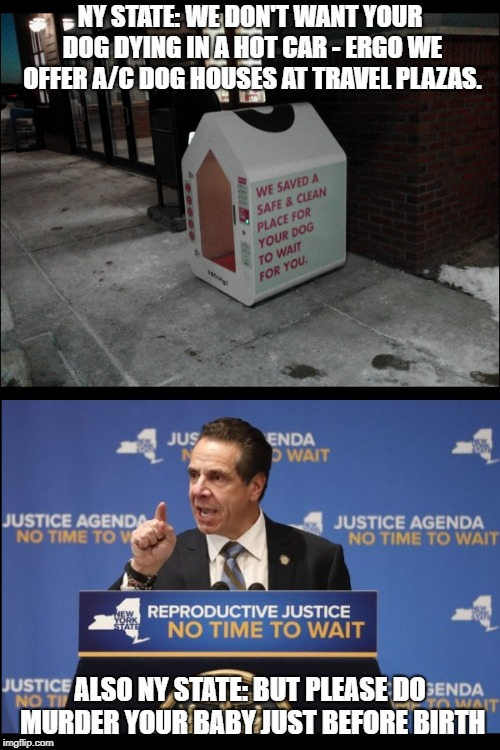NY State priorities. Save the doggies but kill the babies.  | NY STATE: WE DON'T WANT YOUR DOG DYING IN A HOT CAR - ERGO WE OFFER A/C DOG HOUSES AT TRAVEL PLAZAS. ALSO NY STATE: BUT PLEASE DO MURDER YOU | image tagged in infanticide,abortion,pro-choice,pro-life,sin,roe vs wade | made w/ Imgflip meme maker