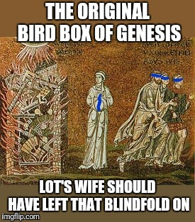 Netflix Original?  | THE ORIGINAL BIRD BOX OF GENESIS LOT'S WIFE SHOULD HAVE LEFT THAT BLINDFOLD ON | image tagged in bird box,bible,meme | made w/ Imgflip meme maker