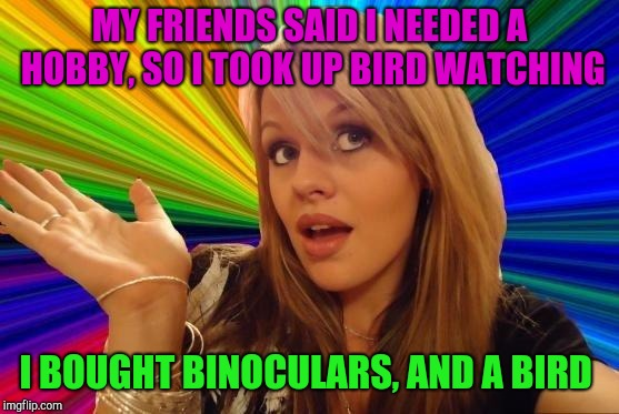 Dumb Blonde | MY FRIENDS SAID I NEEDED A HOBBY, SO I TOOK UP BIRD WATCHING I BOUGHT BINOCULARS, AND A BIRD | image tagged in memes,dumb blonde,jbmemegeek | made w/ Imgflip meme maker