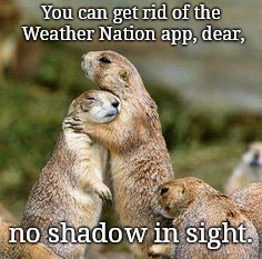 Groundhog family | You can get rid of the Weather Nation app, dear, no shadow in sight. | image tagged in groundhog family,punxsutawney phil,early spring predicted,2019,cute | made w/ Imgflip meme maker