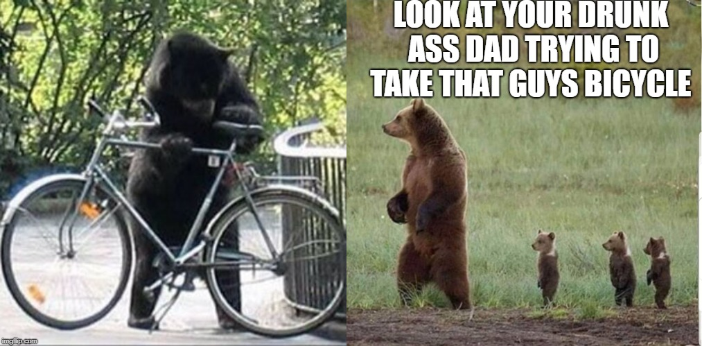 drunk bear | LOOK AT YOUR DRUNK ASS DAD TRYING TO TAKE THAT GUYS BICYCLE | image tagged in bear,drunk | made w/ Imgflip meme maker