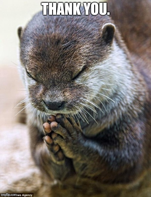 Thank you Lord Otter | THANK YOU. | image tagged in thank you lord otter | made w/ Imgflip meme maker