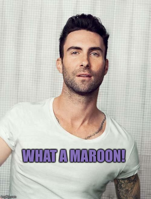 Adam Levine | WHAT A MAROON! | image tagged in adam levine | made w/ Imgflip meme maker
