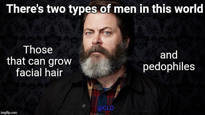 Two different types | There's two types of men in this world Those that can grow facial hair and pedophiles @CLD | image tagged in beard,pedophiles,real men,facial hair,ron swanson,male | made w/ Imgflip meme maker