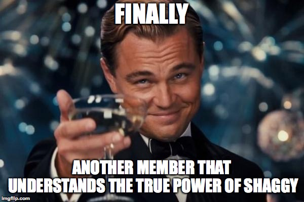 Leonardo Dicaprio Cheers Meme | FINALLY ANOTHER MEMBER THAT UNDERSTANDS THE TRUE POWER OF SHAGGY | image tagged in memes,leonardo dicaprio cheers | made w/ Imgflip meme maker