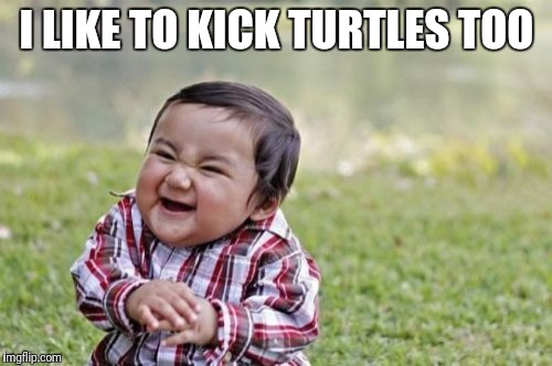 Evil Toddler Meme | I LIKE TO KICK TURTLES TOO | image tagged in memes,evil toddler | made w/ Imgflip meme maker
