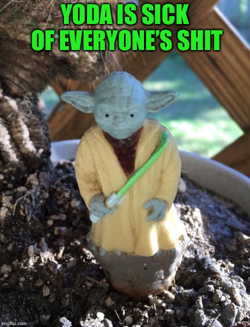 YODA IS SICK OF EVERYONE'S SHIT | made w/ Imgflip meme maker