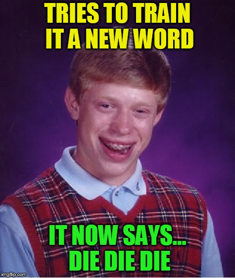 Bad Luck Brian Meme | TRIES TO TRAIN IT A NEW WORD IT NOW SAYS... DIE DIE DIE | image tagged in memes,bad luck brian | made w/ Imgflip meme maker