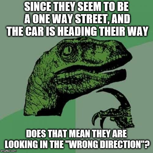 "Philosoraptor Meme | SINCE THEY SEEM TO BE A ONE WAY STREET, AND THE CAR IS HEADING THEIR WAY DOES THAT MEAN THEY ARE LOOKING IN THE ""WRONG DIRECTION""? 