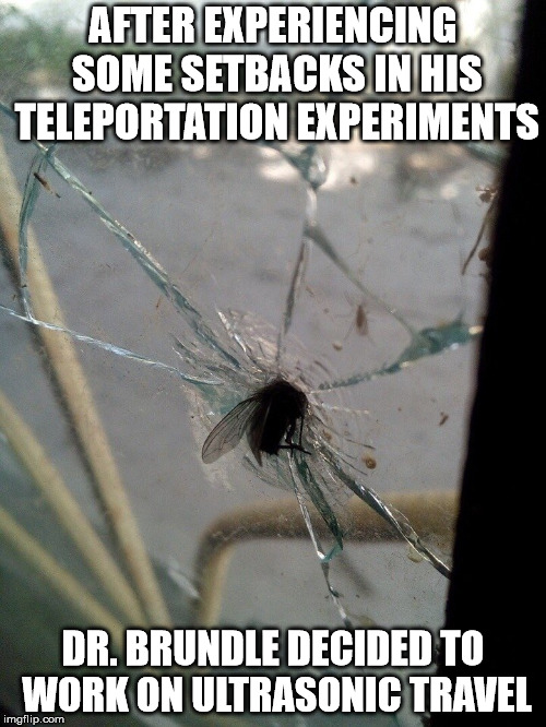 "The plot for ""The Fly 3"" has just been leaked. 