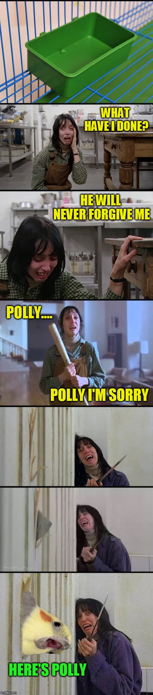 Never Ever Forget To Feed Polly! (Bird Weekend February 1-3, a moemeobro, Claybourne, and 1forpeace Event) | WHAT HAVE I DONE? HERE'S POLLY HE WILL NEVER FORGIVE ME POLLY I'M SORRY POLLY.... | image tagged in memes,bird weekend,the shining,birds,polly,heres johnny | made w/ Imgflip meme maker