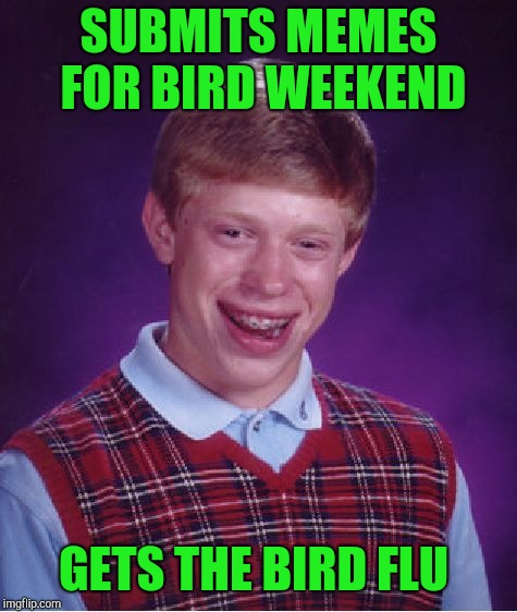 Bird Weekend February 1-3, a moemeobro, Claybourne & 1forpeace Event! | SUBMITS MEMES FOR BIRD WEEKEND GETS THE BIRD FLU | image tagged in memes,bad luck brian,1forpeace,jbmemegeek,bird weekend | made w/ Imgflip meme maker