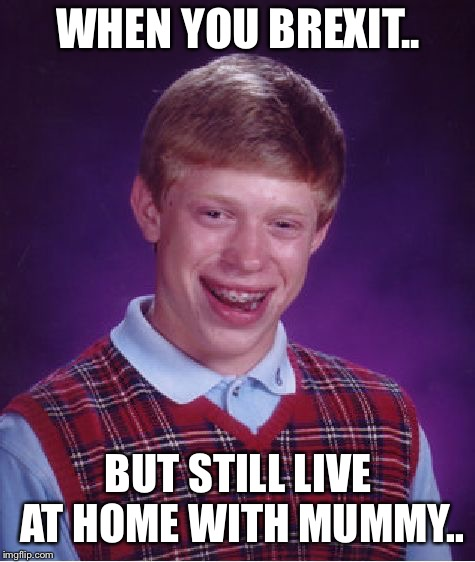 Bad Luck Brian Meme | WHEN YOU BREXIT.. BUT STILL LIVE AT HOME WITH MUMMY.. | image tagged in memes,bad luck brian | made w/ Imgflip meme maker